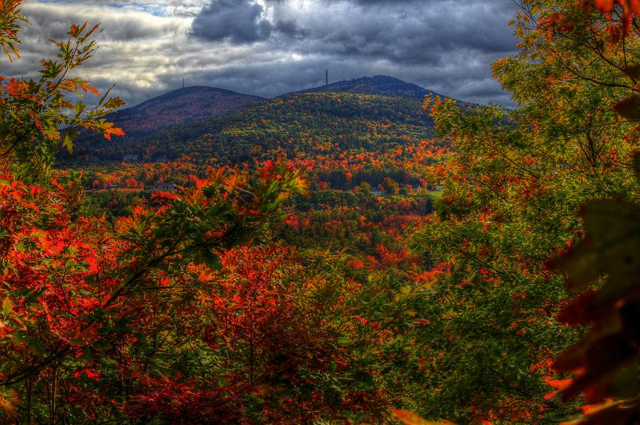 Fall Photograph - Fall Day by Holly Cyr