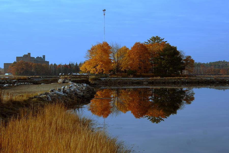 Fall Photograph - Fall by Doug Mills