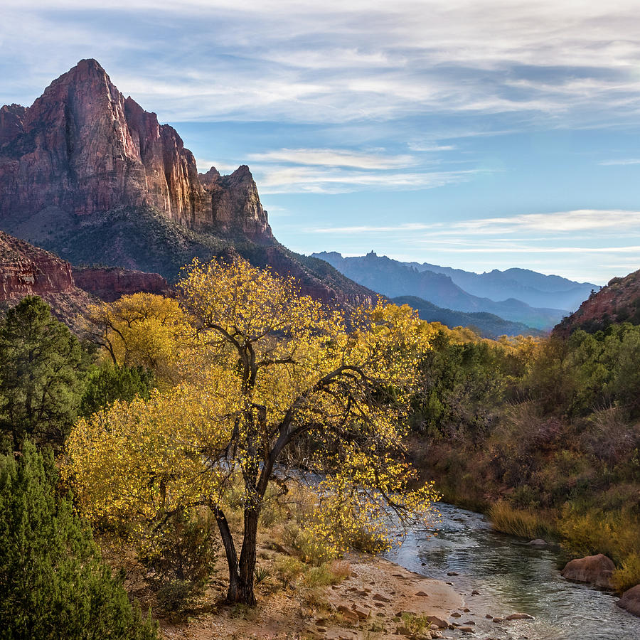 Fall Evening At Zion Photograph