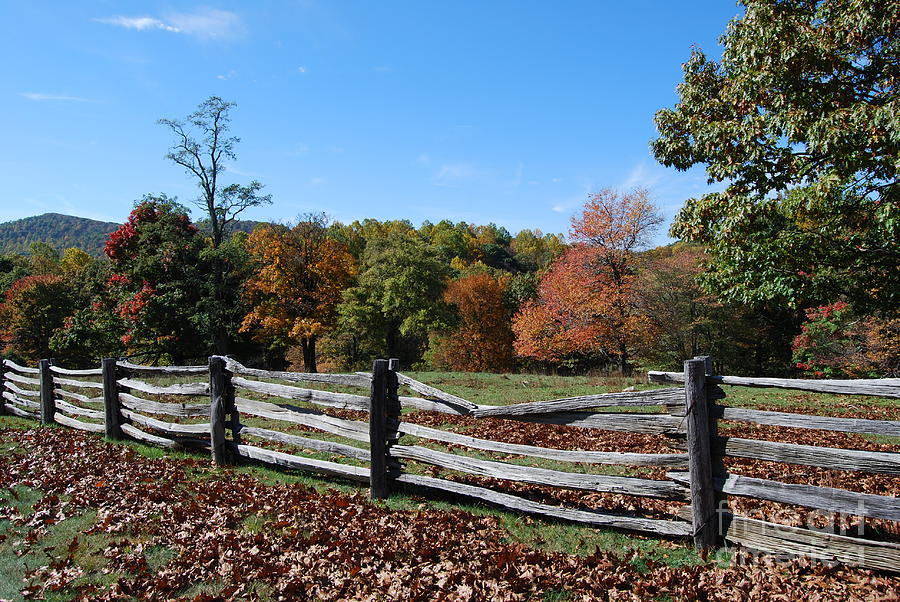 Rural Photograph - Fall Fence by Eric Liller
