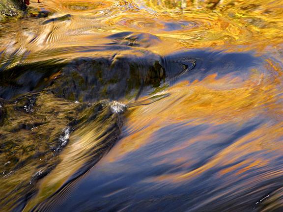 Fall Flow 2 Photograph by Joanne Baldaia