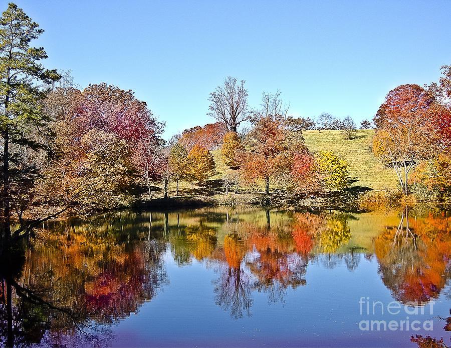 Fall Foliage N Carolina Photograph