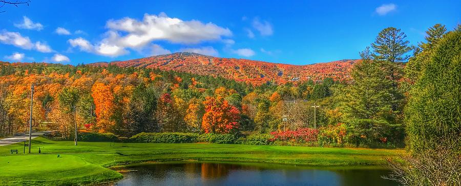 Fall Foliage by Pat Moore