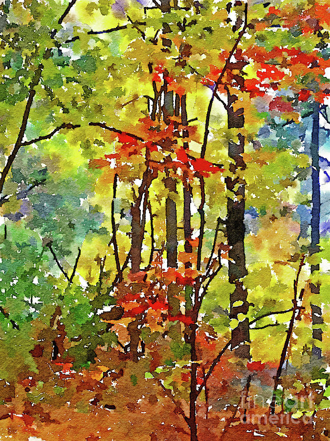 Landscape Digital Art - Fall Forest 2 by David Boudreau