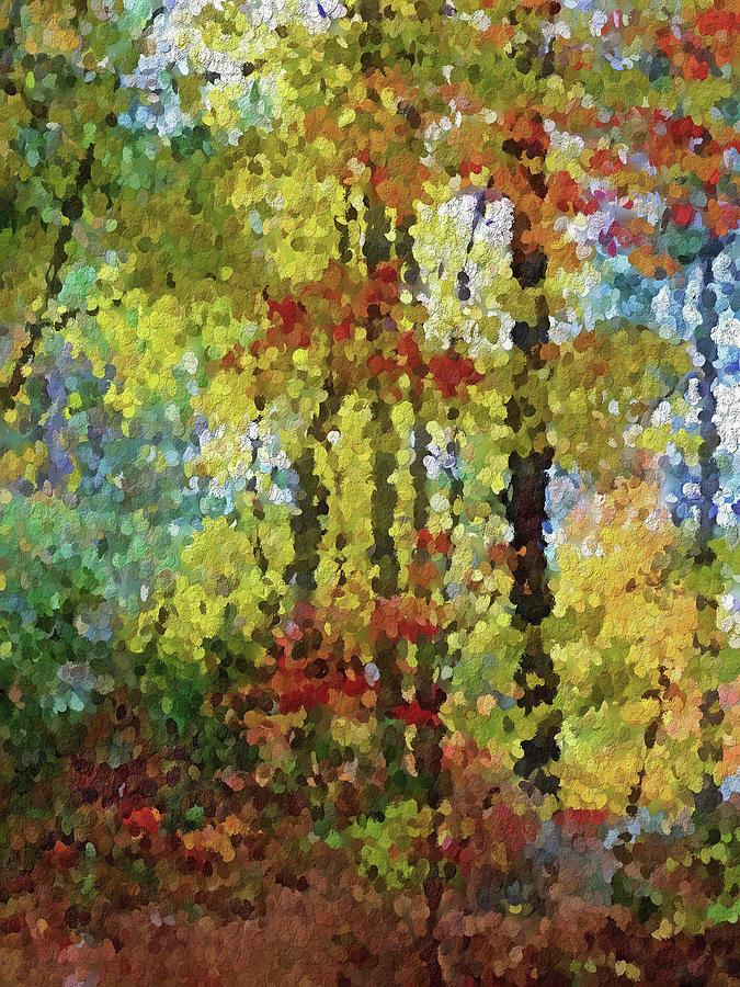 Landscape Photograph - Fall Forest by David Boudreau