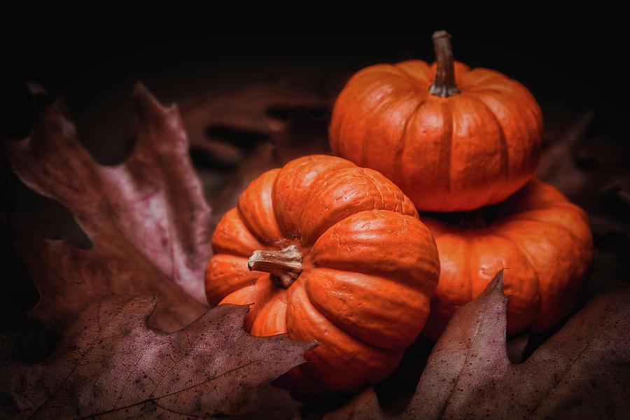 Autumn Photograph - Fall Fruits by Tom Mc Nemar