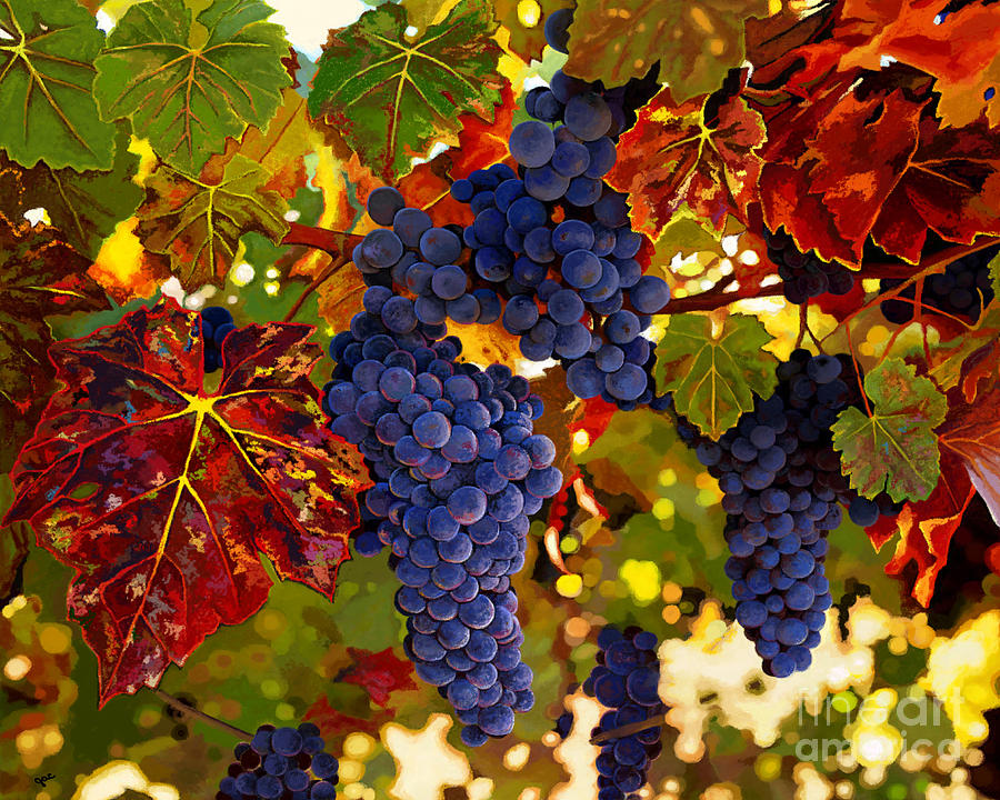 Fall Grapevines by Jackie Case