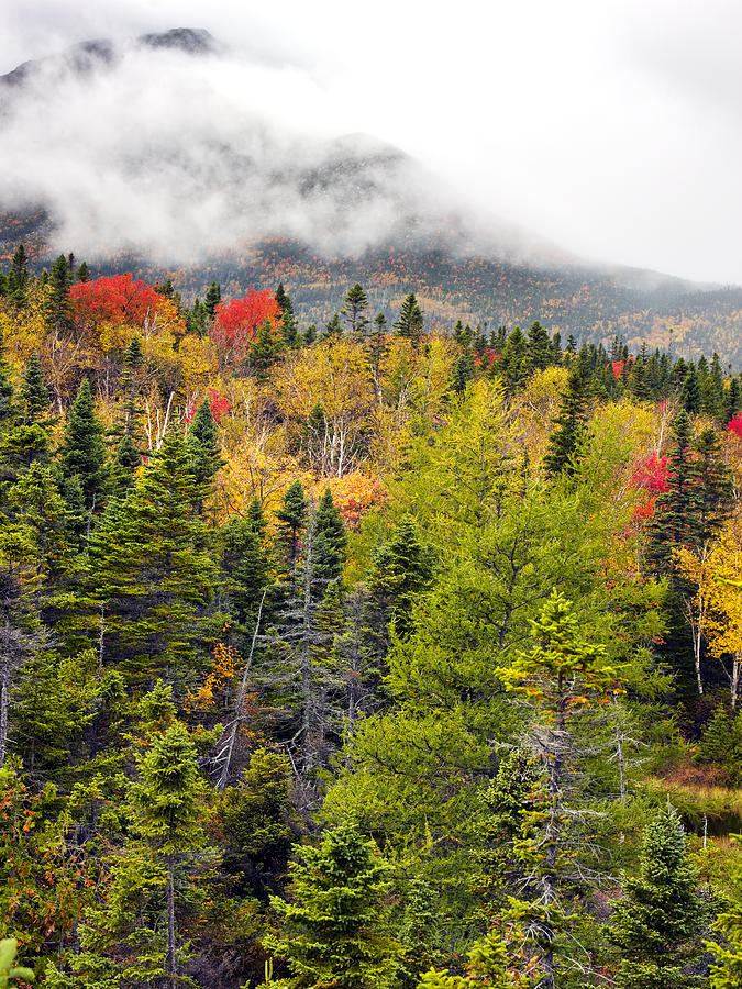 Baxter State Park Photograph - Fall In Baxter State Park Maine by Brendan Reals
