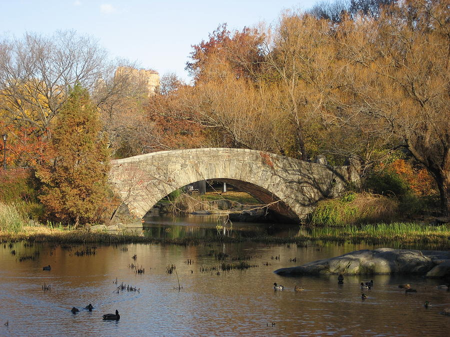 Bridge Photograph - Fall In Central Park by Jennifer  Sweet