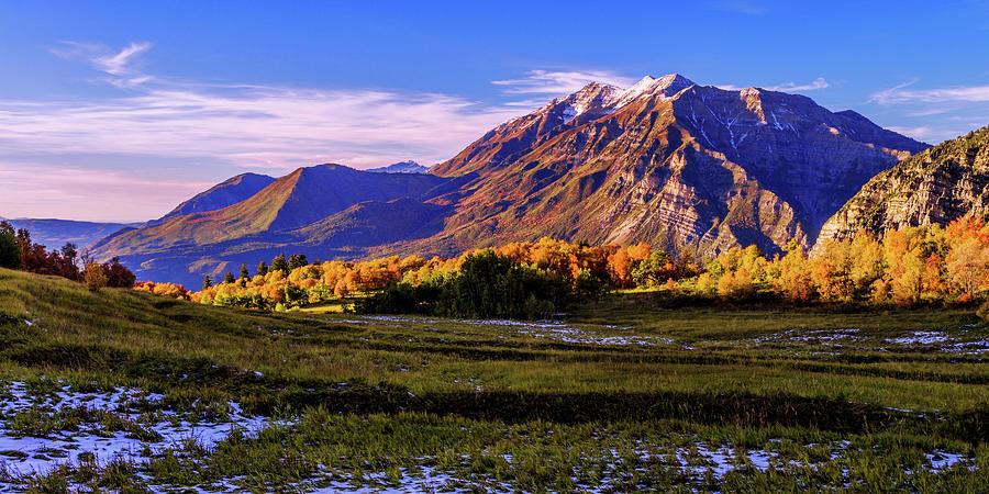 Utah Photograph - Fall Meadow by Chad Dutson