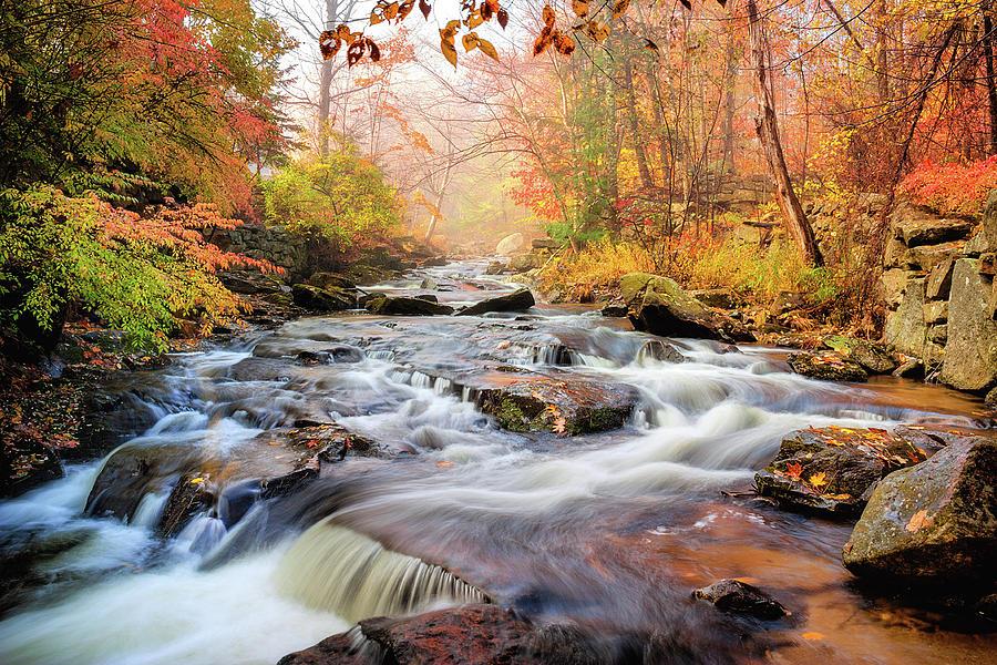 Fall Photograph - Fall Morning At Gunstock Brook by Robert Clifford