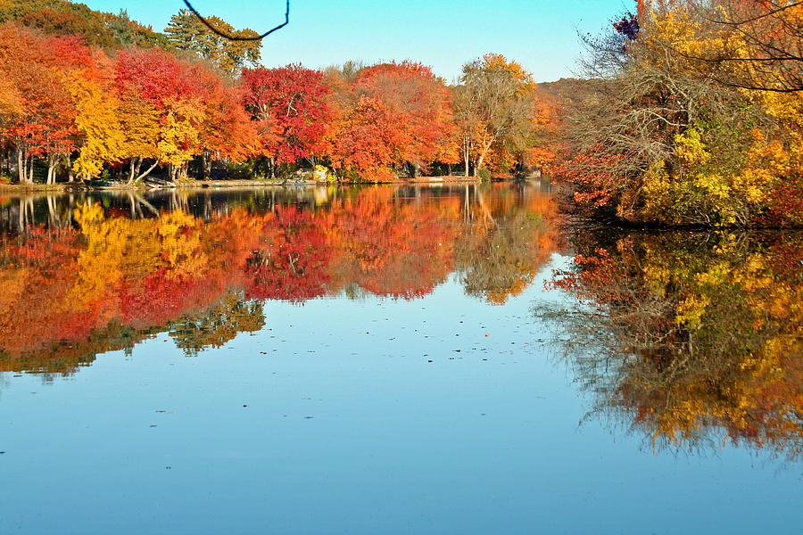 Landscape Photograph - Fall Morning In East Lyme 1 by Gerald Mitchell