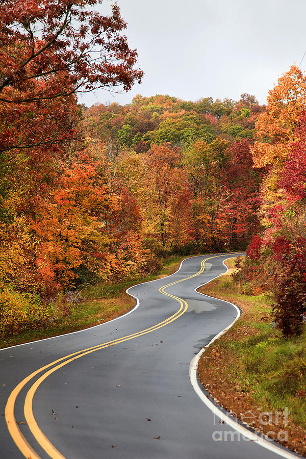 fall mountain road photograph by jill lang