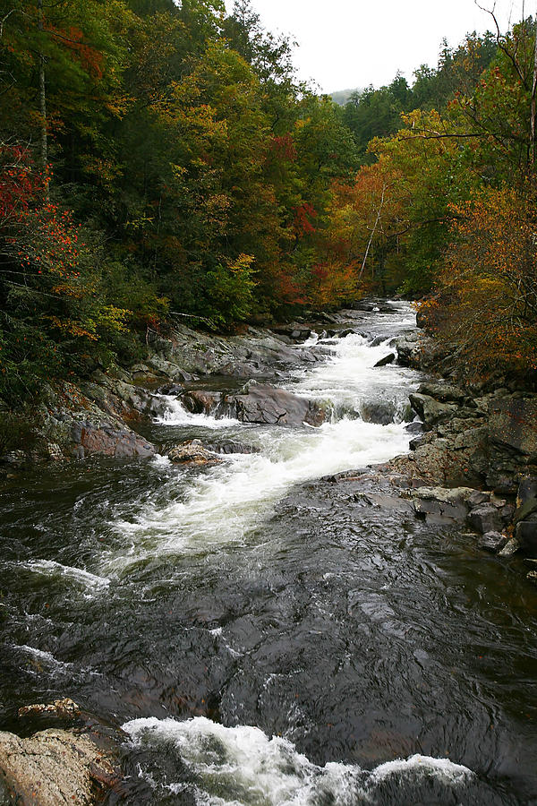 Scenery Photograph - Fall Mountain Stream by James Jones