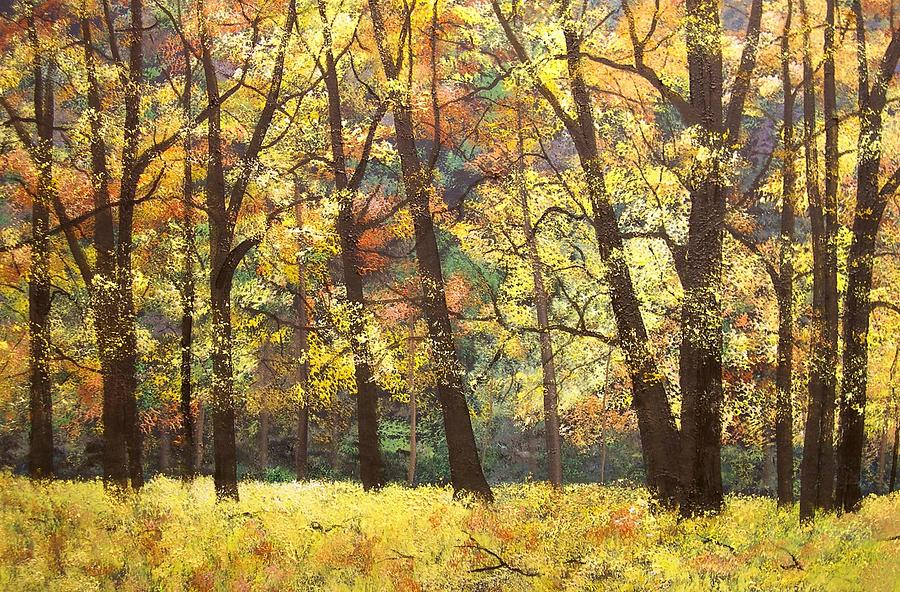 Autumn Painting - Fall Oaks In El Capitan Meadow Yosemite National Park by Connie Tom