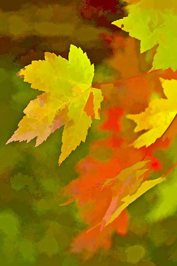 Fall Of Leaf Digital Art