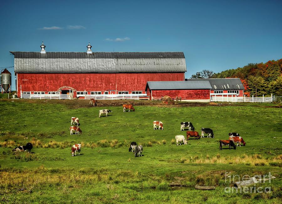 New Hampshire Farms Photograph - Fall On The Farm by Diana Nault