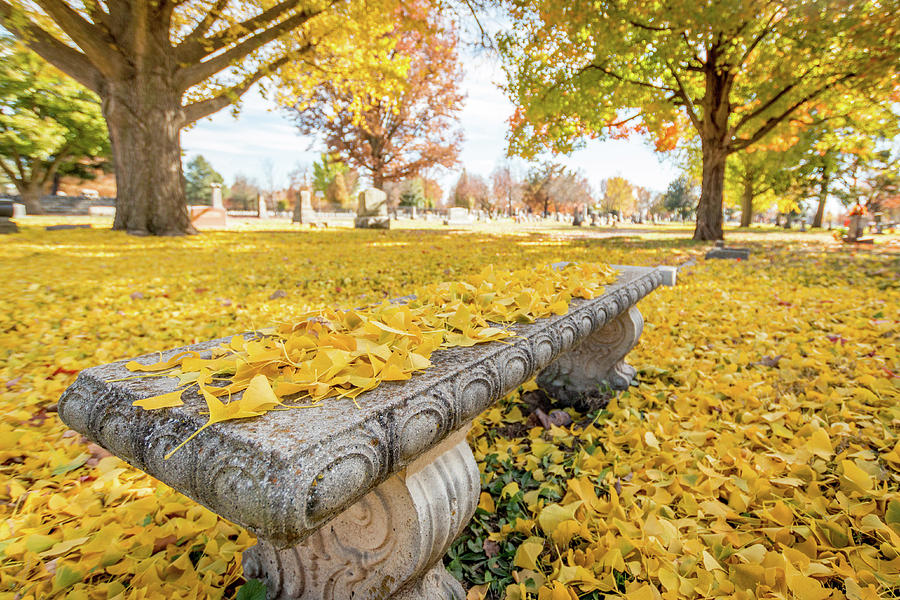Stone Photograph - Fall Park Bench by Steven Jones