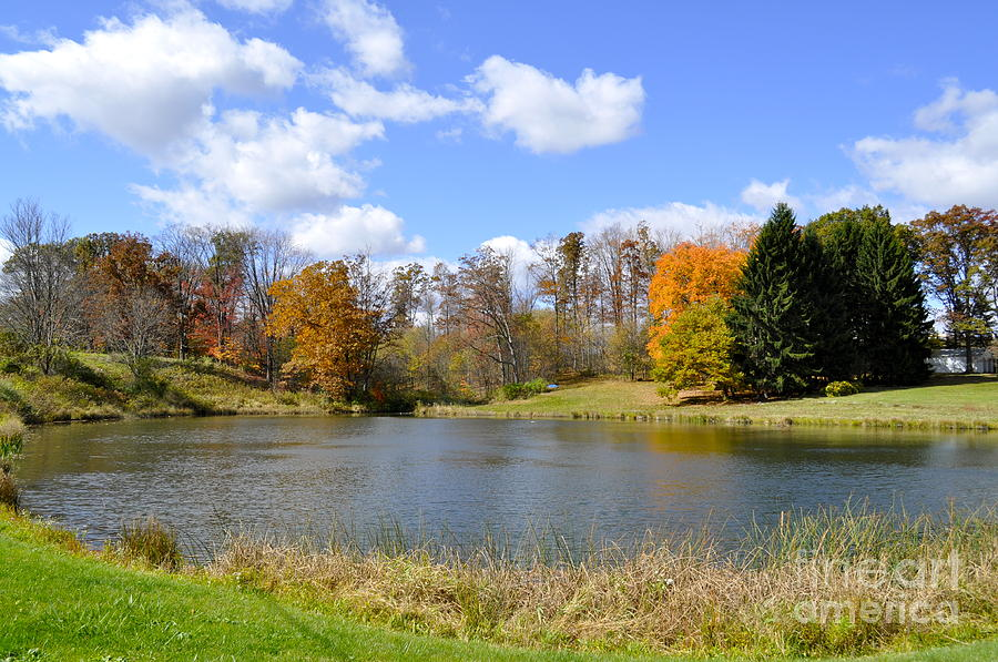 Fall Photograph - Fall Pond by Penny Neimiller
