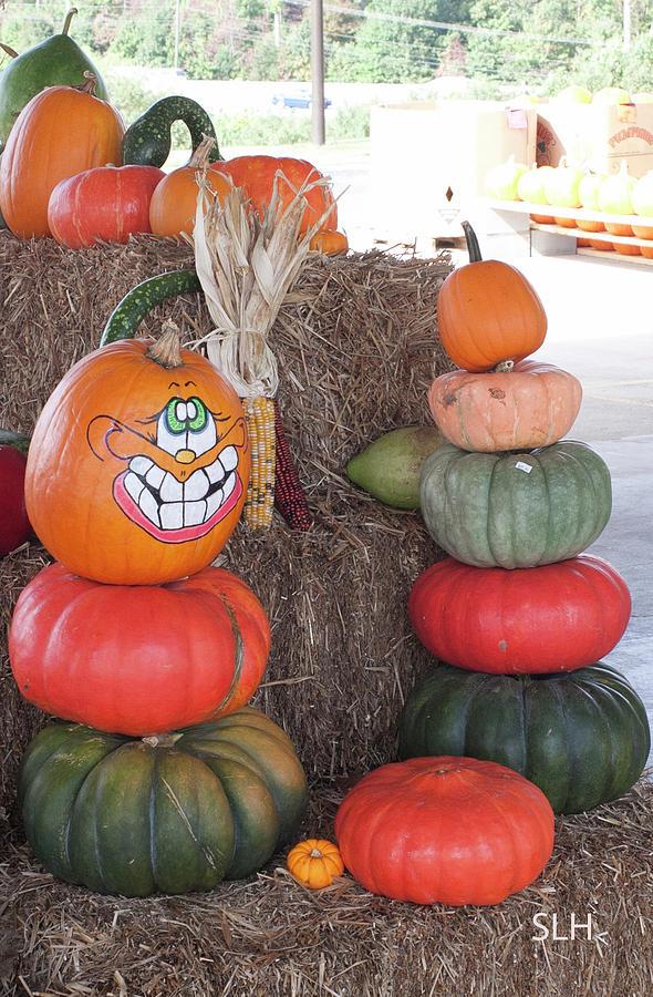 Fall Photograph - Fall Pumpkins by Lee Hartsell