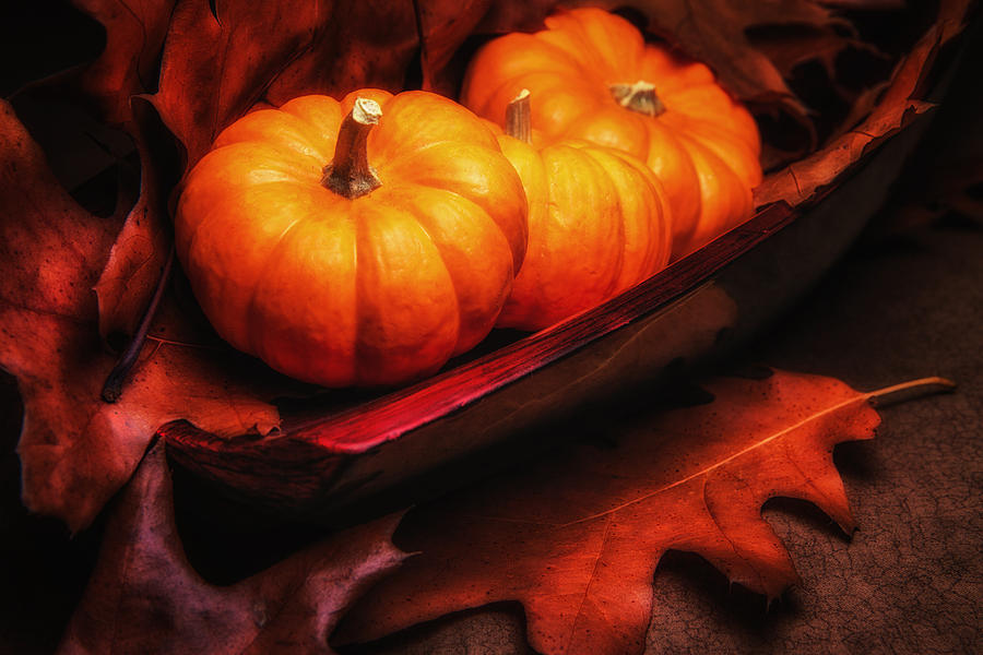 Autumn Photograph - Fall Pumpkins Still Life by Tom Mc Nemar