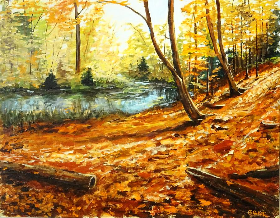 Fall Ravine Walk by BRENT ARLITT