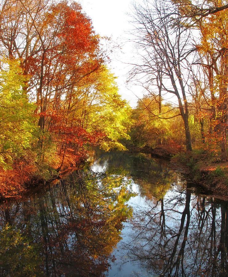 Landscape Photograph - Fall Reflected by Jessica Jenney