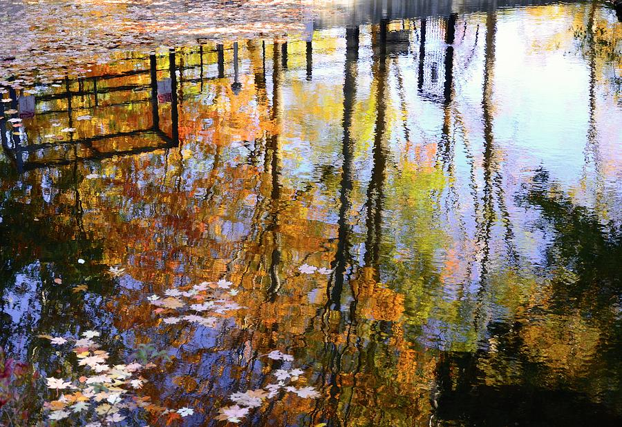 Fall Reflections by Corinne Rhode