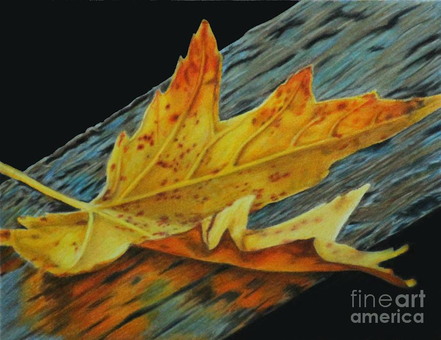 Fall Painting - Fall Reflections by Jennifer Watson