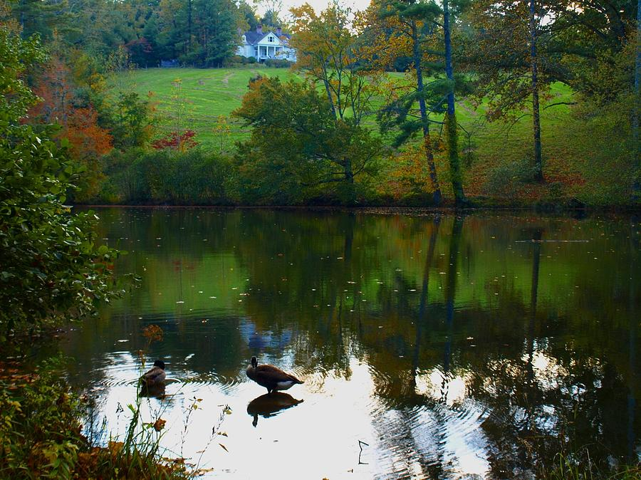 Water Photograph - Fall Reflections by Kristina Scott