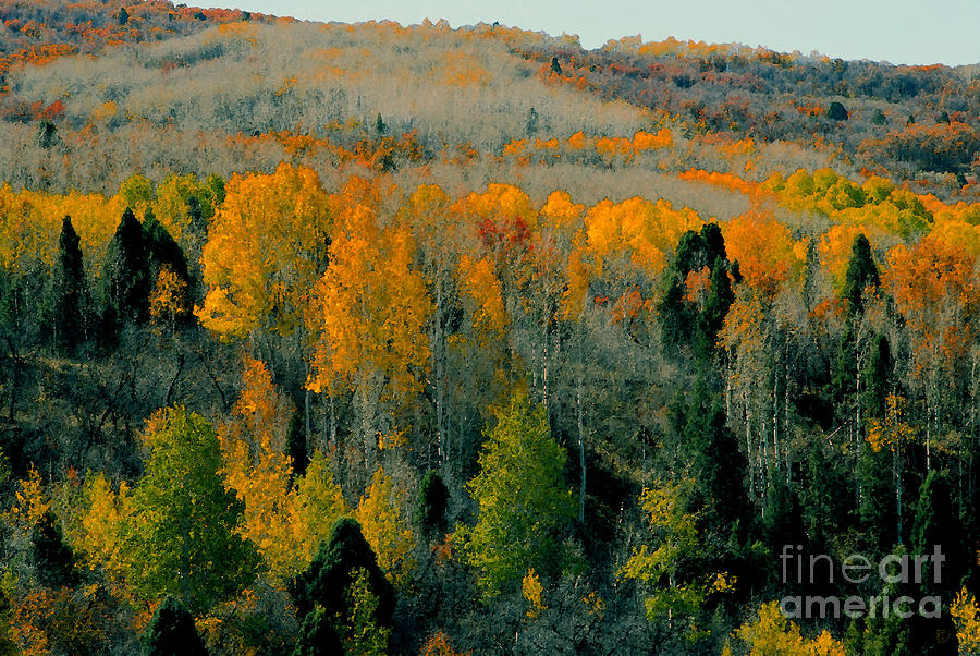 Fall Painting - Fall Ridge by David Lee Thompson