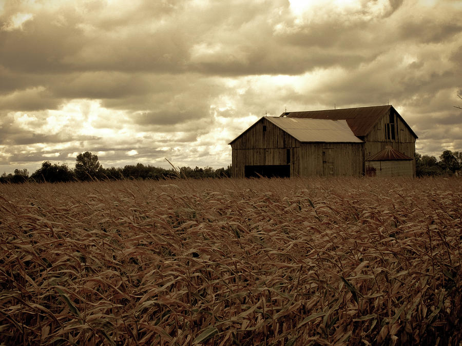 Fields Photograph - Fall Skies And Fields by Peter May
