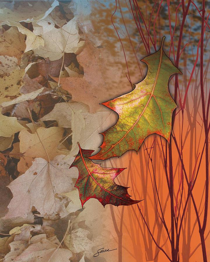 Abstract Digital Art - Fall Spectrum by Harold Shull