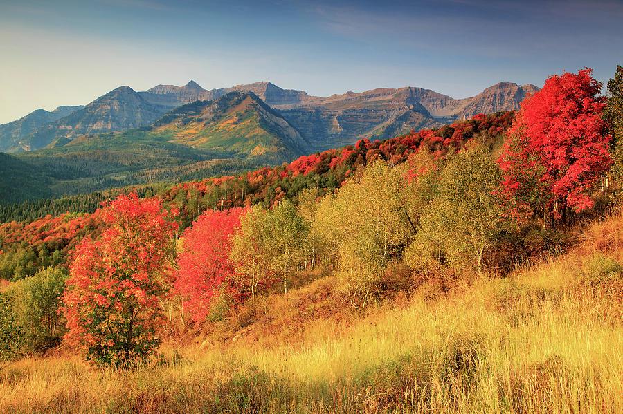 Autumn Photograph - Fall Splendor With Mount Timpanogos. by Johnny Adolphson