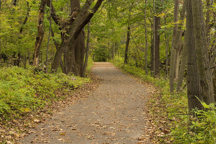 Trail Photograph - Fall Trail Scene 45 B by John Brueske