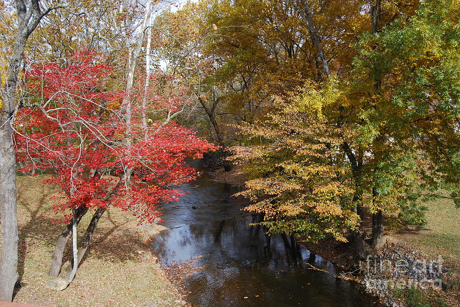 Fall Photograph - Fall Transition by Eric Liller