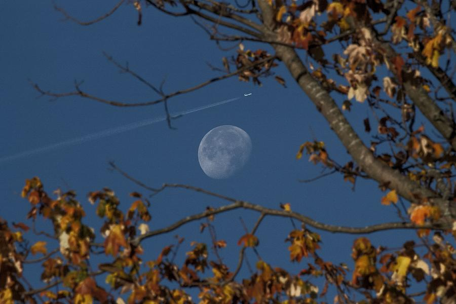 Fall Trip to the Moon by Shoeless Wonder