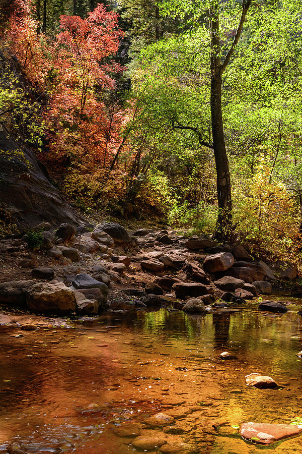 Fall Water Crossing Photograph