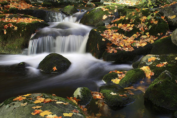 Water Photograph - Fall Water Flow Harriman State Park New York by Mike Malandra