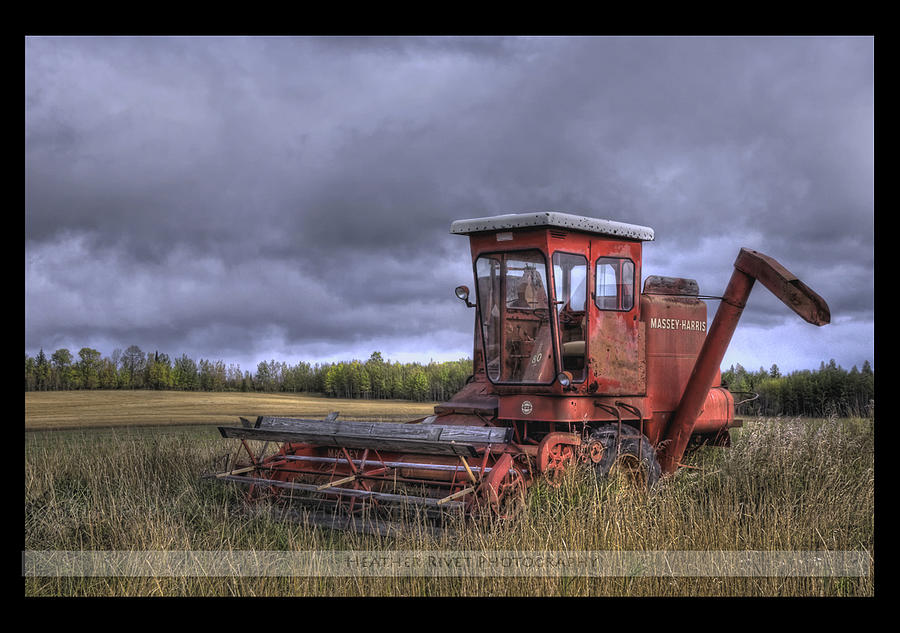 Farm Photograph - Fall Wheatfileds by Heather  Rivet