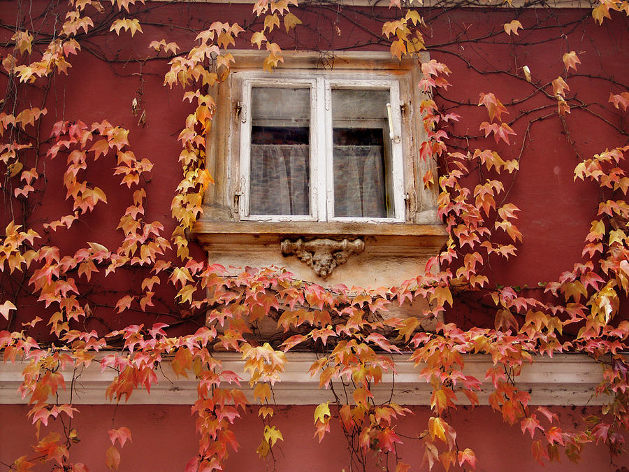 Fall Window,Prague by Ken Ketchum