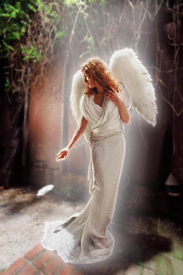 фото ангелов хранителей настоящих клещи разделяют