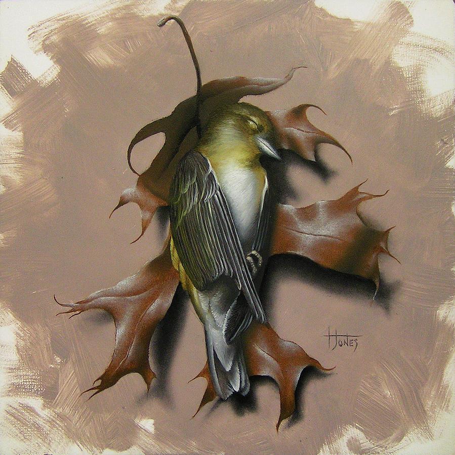 Bird Painting - Fallen Finch by Timothy Jones