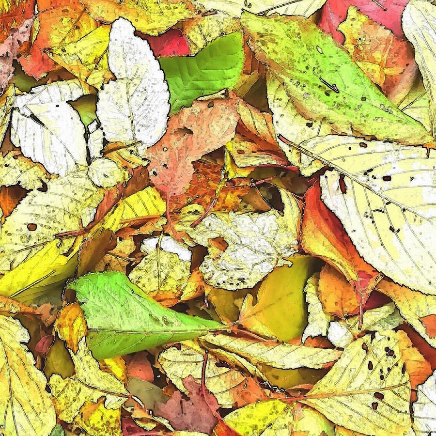 Leaf Digital Art - Fallen leaves by Kumiko Izumi