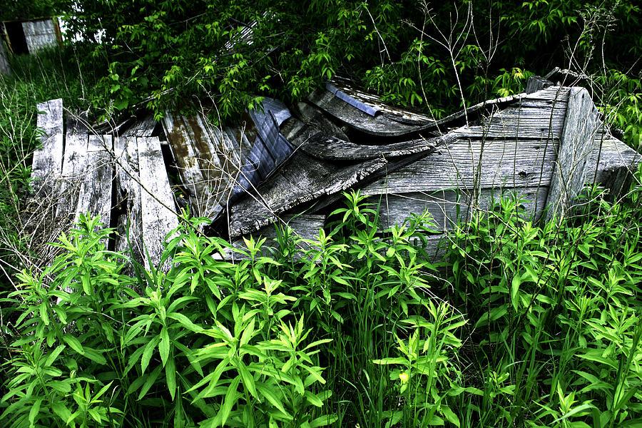 Fallen Photograph - Fallen Shed by Katherine Gaucher