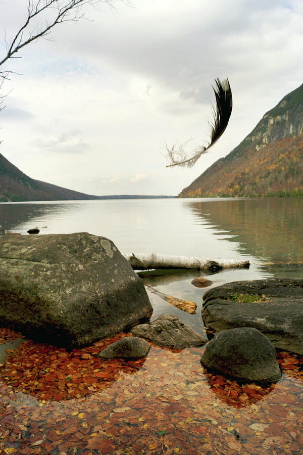 Falling Feather At Lake Willoughby by Garrett Sheehan