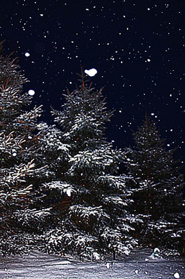 Romantic Photograph - Falling Snow by David Kehrli