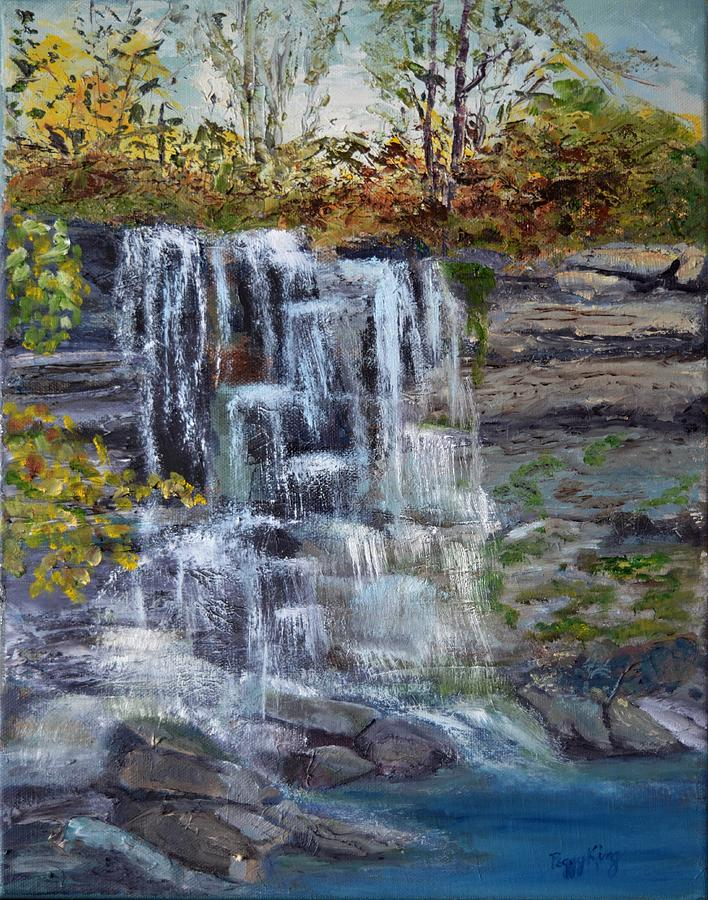 Falls at Rock Glen by Peggy King