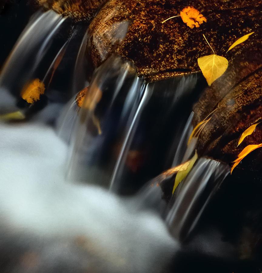 Autumn Photograph - Falls Of Autumn by Steven Milner