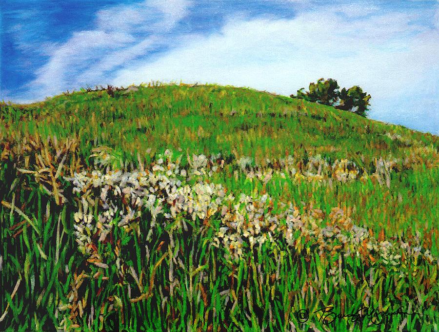 False Gromwell Slope by Bruce Morrison